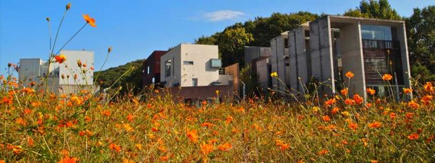 Concrete modern two and three story buildings at the Heyri Artists Village in Paju, Korea.