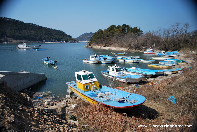 Brightly colored blue and yellow boats at the harbor in Seonyudo, some are moored in the water, others pulled up onto the scrubby beach, on a sunny day.