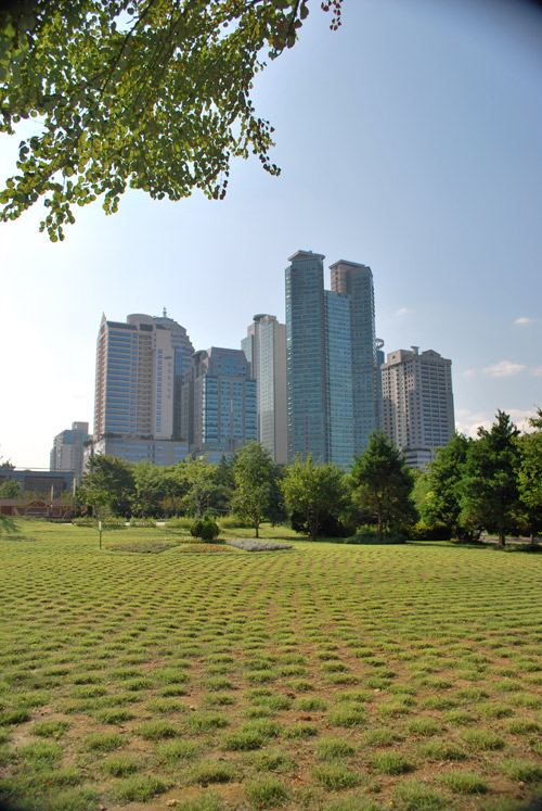 View across grassland towards tall skyscrapers with trees in front of them on a bright sunny day.