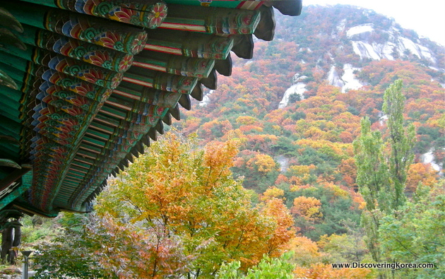 View of fall colors from under a temple overhang in Bukhansan National Park. To the right of the frame, green, gold, and reddish-brown foliage, to the left, a multicolored wooden overhang.