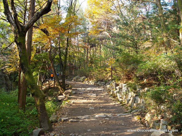 A flat, rocky hiking trail through a forest, with light sunshine filtering through the trees at Cheonggyesan.