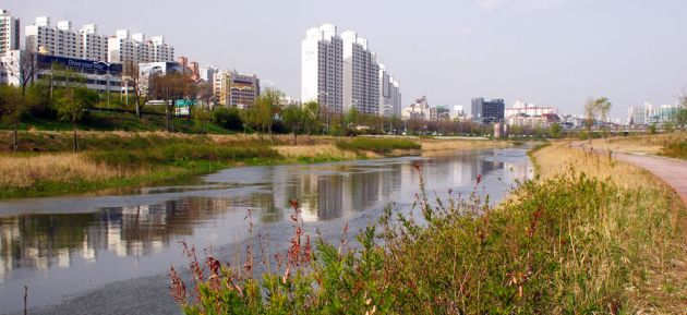 River running through Yeouido Saetgang Ecological Park, with city on the left of the frame, and a pathway and long grasses to the left of the frame.