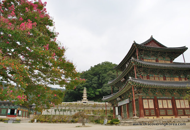 Exterior view of Geumsansa Temple, an ornate wooden building with brown pillars, and turquoise paintwork, on three levels. To the left of the frame is a large tree with pink flowers.