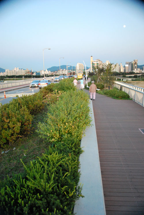 View across the Gwangnaru pedestrian bridge, with bushes on the left of the frame, a man walking, and the city of Seoul in the distance.