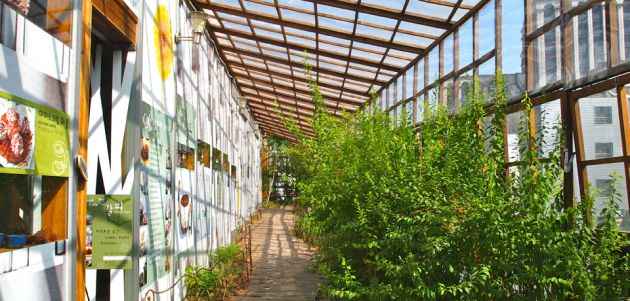 View down a pathway covered by a glass ceiling with wood slats, to the left of the frame is a white wall covered with signs, to the right is green bushes and a glass wall.
