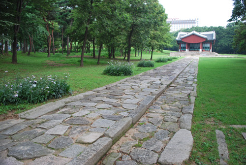 A stone pathway with grass to the right of the frame, and grass and pine trees to the left of the frame, going towards a wooden building with a curved roof of the Jangjagak Shrine.