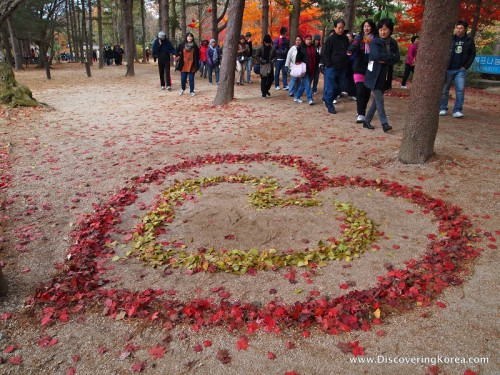 Red fall leaves arranged into a heart shape, with a smaller heart shape of yellow leaves inside, on a sandy background. Pedestrians walking past, amongst tree trunks on Namiseom island.
