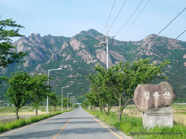 Towards the mountains of Wolchulsan National Park, a tree lined road in the foreground runs between grassy plains, with the dramatic mountains in the background.