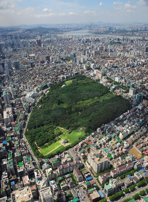 Aerial view of Seoul's Samneung park, a large green space in the middle of the city, the river can be seen in soft focus in the background.