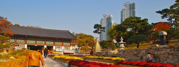 Path leading between rows of flower containers, leading to the Bongeunsa Buddhist temple, a wooden building with dark roof, and turquoise shutters. To the right of the frame is a stone wall leading up to a park with trees and grass, with two skyscrapers in the background.