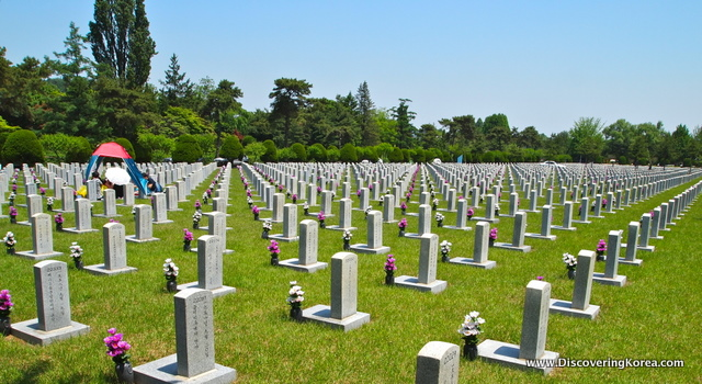 Light colored grave stones, each with a pink or white flower on a background of green grass at Seoul National Cemetery. A sunny day, with trees in the background.