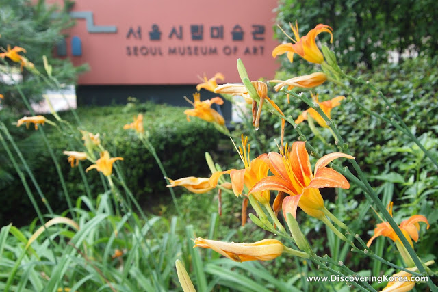 Close up of orange lilies in front of green vegetation with a brick-red colored sign in the background Seoul Museum of Art.