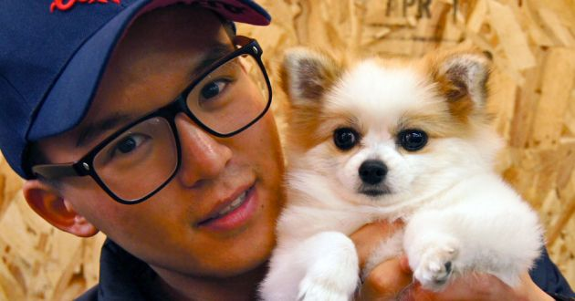 A young Korean man in a blue baseball cap, wearing glasses, cuddles a small white and tan dog at Hongdae's pet cafe.