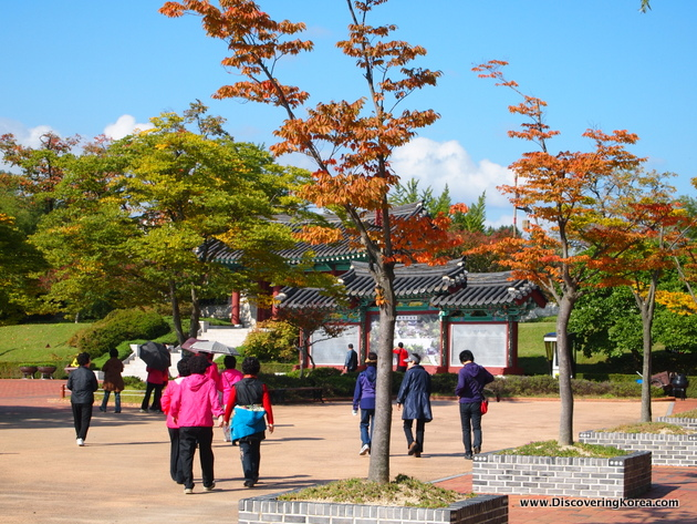 A courtyard in a park in Gangneung, with bright sunshine, trees, grass and to the right of the frame are trees with orange leaves in brick containers. People are walking around and reading a signboard.